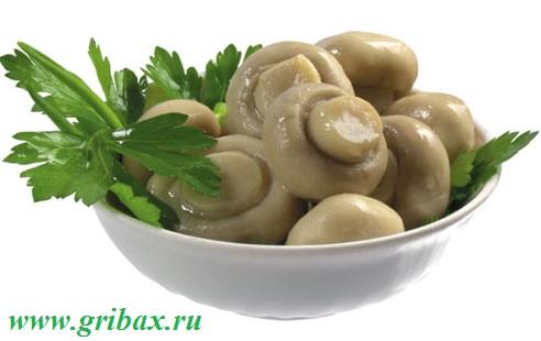 Пищевой состав грибов