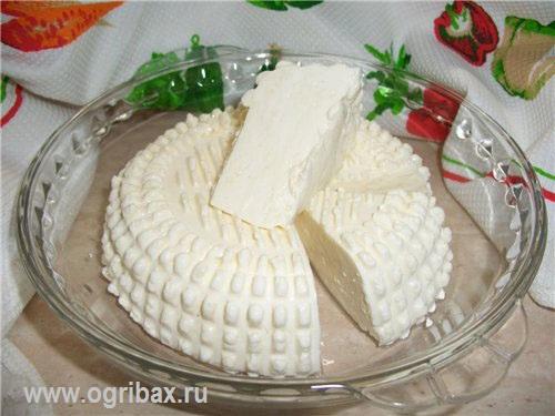 Сыр из молочного гриба